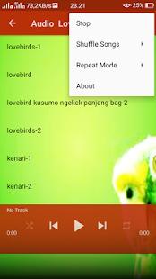 Kicau Lovebird memancing lepas kandang - náhled