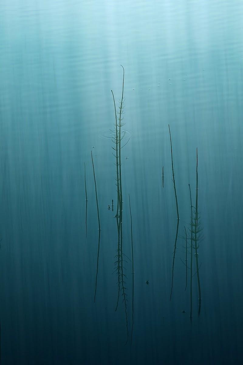 Lagoon di Sil-M