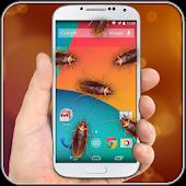 Cockroach in Phone Prank