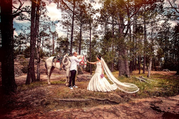 Fotógrafo de bodas Efrain López (lpez). Foto del 15.10.2016