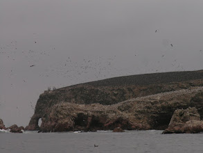 Photo: Guano birds - The black on top of the island are Guanay Cormorants, while the white below are Peruvian Boobies.