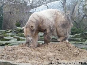 Photo: Zurueck zum frischen Sandhaufen ;-)