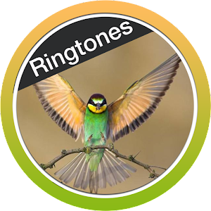 Birds Ringtones Free 2018 APK Download for Android