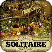 Hidden Solitaire: The Country
