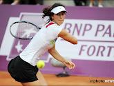 Tsvetana Pironkova wil comeback maken op de WTA Tour