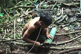 Photo: Prepare bamboo for cooking food-3 Days Nam Ha Jungle Camp in Luang Namtha, Laos