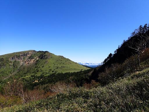 根子岳東斜面の草原