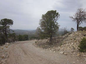 Photo: Looking down the road I came up to Cedro Peak