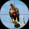 Desert Birds Sniper Shooter - Bird Hunting 2019 icon