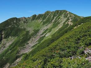 Photo: 仙丈岳を振り返って