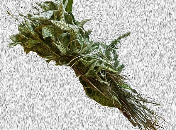 Chef's Note: What is a Bouquet Garni? A bouquet Garni is a bundle of herbs...