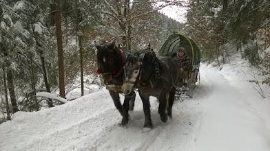 Photo: Za rok jedziemy konno :)