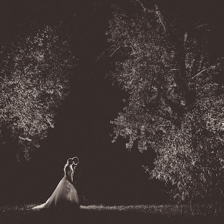 Fotógrafo de bodas Gregor Gomboc (gregorgomboc). Foto del 15.11.2016