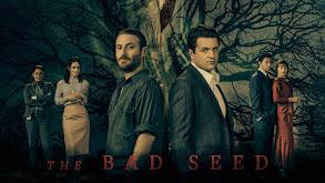 The Bad Seed thumbnail