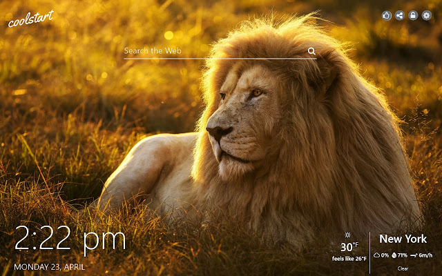 Lions HD Wallpapers WIld Cats New Tab Theme