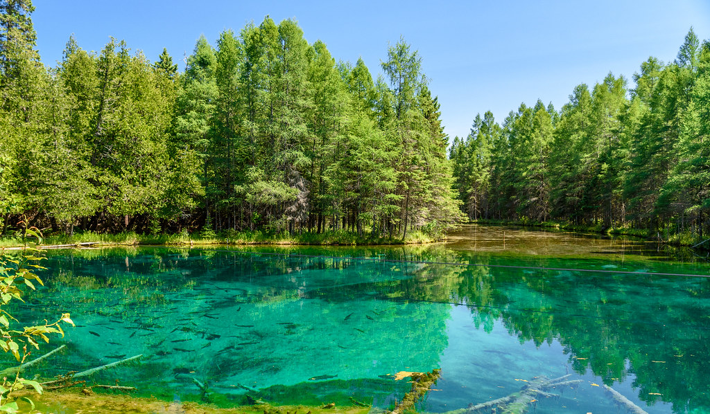 The Big Spring in Palms Book State Park, Michigan's largest natural freshwater spring