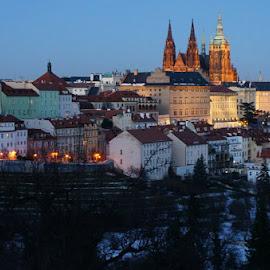Prague castle, Hradschin by Luboš Zámiš - City,  Street & Park  Night