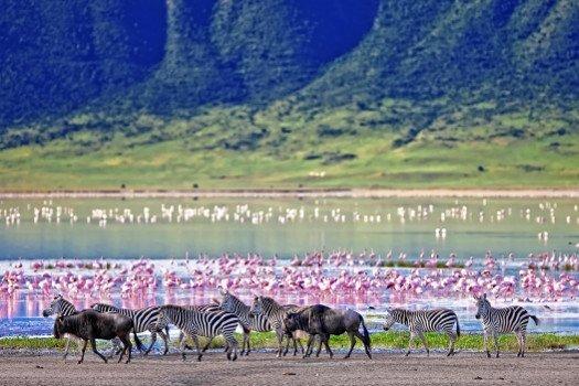 Os melhores destinos de férias na Tanzânia
