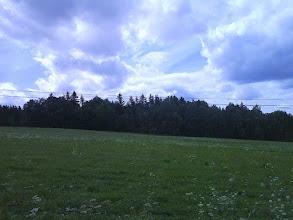 Photo: Lesík ve kterém se ukrývají haldy.