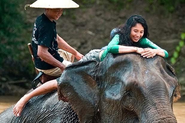 Balade à dos d'éléphant à Luang Prabang