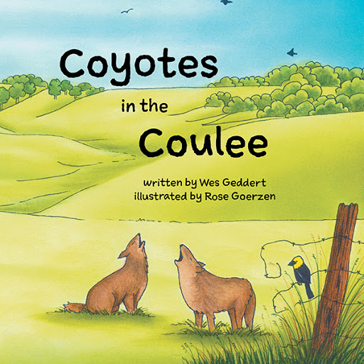 Coyotes in the Coulee