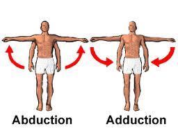 Gerak Anatomis – Suwekaprabha Yoga
