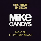 One Night in Ibiza (Radio Mix) (feat. Patrick Miller)