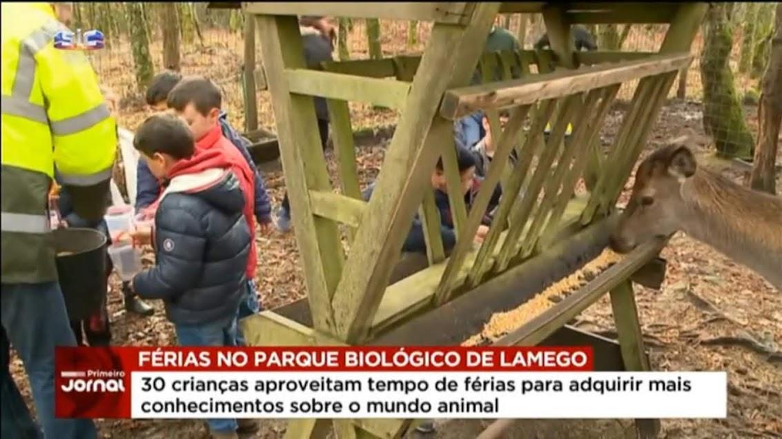 Vídeo - Parque Biológico de Lamego recebe crianças em época de férias - SIC