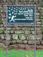 Photo: FYI (Sigiriya)
