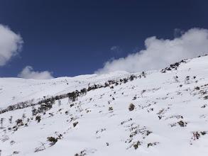 周りは雪原