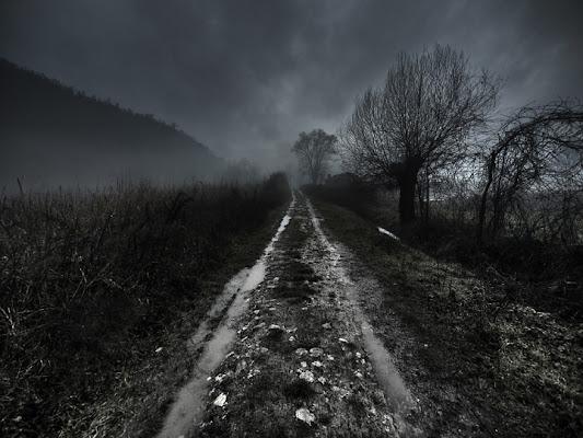 Enjoy the silence di Mirko Macari Fotografia