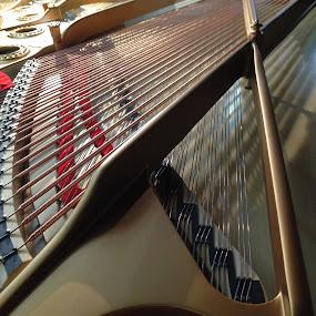 Innereien by Marianne Fischer - Artistic Objects Musical Instruments (  )