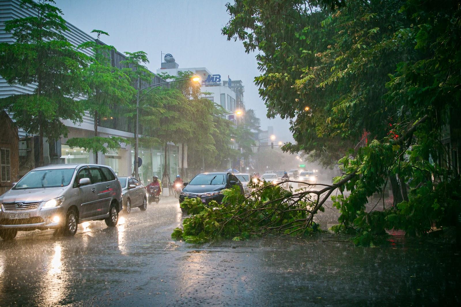 Ảnh hưởng của bão đến cuộc sống người dân