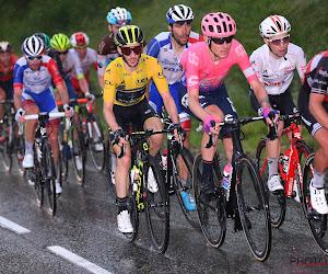 Tweede uit het klassement stapt onderweg af in laatste etappe in Dauphiné