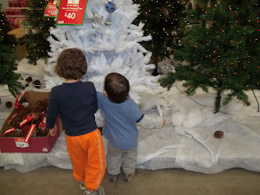 Photo: The boys were super excited about finding the Christmas area.  They really wanted to touch everything.