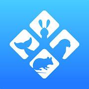Malta seznamka app