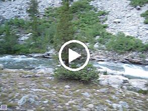 Video: South Fork San Joaquin River