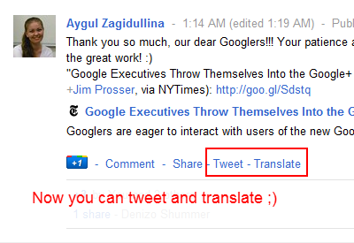 Chrome插件:Google+翻译按钮