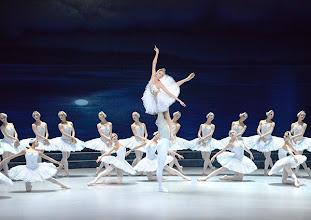 Photo: Ballett SCHWANENSEE in der Wiener Staatsoper/ Wiener Staatsballett. Olga Esina und Vladimir Shishnov. Premiere 16. März 2014. Foto: Barbara Zeininger. M