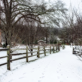 Snow Day at Glendale Shoals by Teresa Solesbee - City,  Street & Park  Neighborhoods ( shoals, snow, winter, cold, trails )