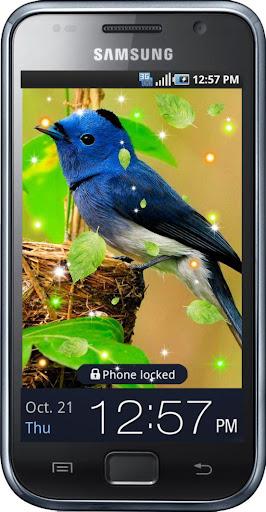 Birds Amazing HQ 2015 LWP