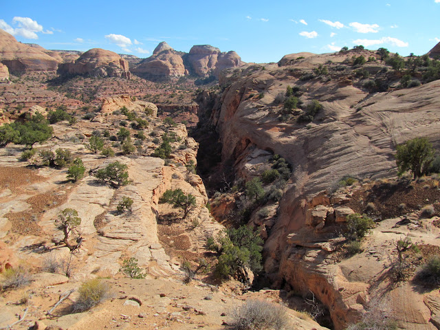 Above the exit canyon
