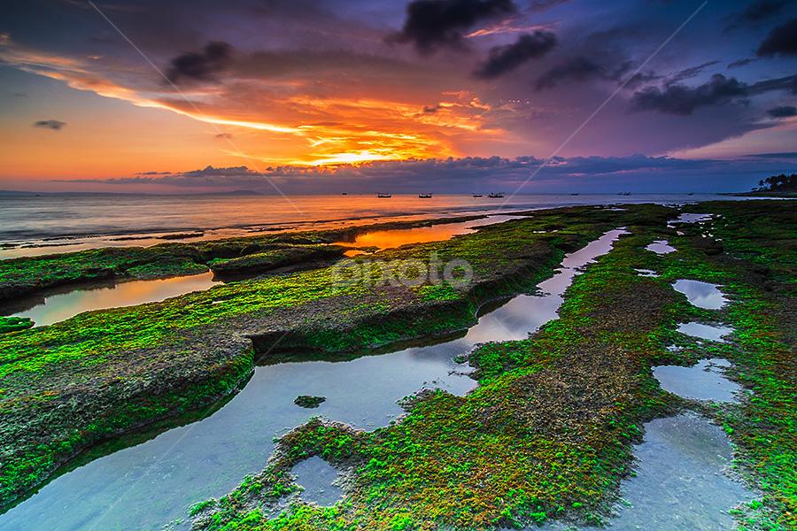 Greeny by Budi Astawa - Landscapes Sunsets & Sunrises ( bali, cupel, beach, negara )