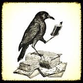 Divination - Wisdom oracle