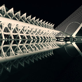Calatrava's Reflection  by Sander Monster - Buildings & Architecture Architectural Detail