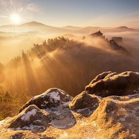 Misty Morning by Karel Stepan - Landscapes Sunsets & Sunrises ( national park, mountain, fog, autumn, outdoor, sunrise, morning, landscape )