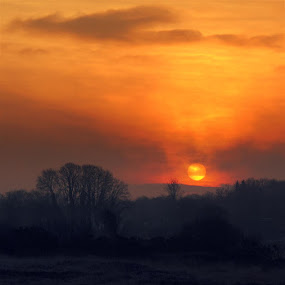 A new day by Annie Japaud - Landscapes Sunsets & Sunrises ( ireland, red, sky, trees, sunrise, landscape, sun,  )