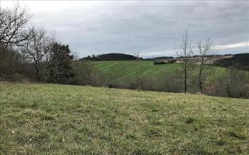 terrain à Saint-Pardoux-de-Drône (24)