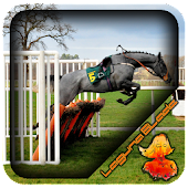 Horse Jump Fence Design