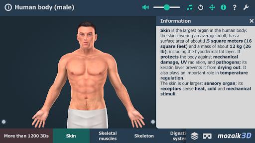 Human body (male) educational VR 3D 1.19 screenshots 1